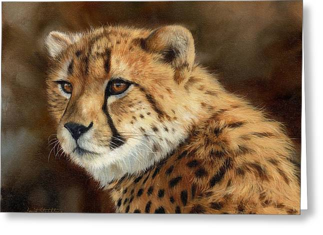 Cheetah Greeting Card by David Stribbling