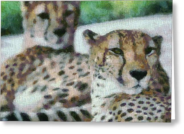 Cheetah Portrait Greeting Card by Dan Sproul