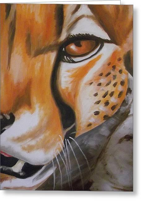 Cheetah Up Close Greeting Card by Scott Dokey