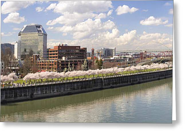 Cherry Blossom Along Portland Oregon Waterfront Panorama Greeting Card