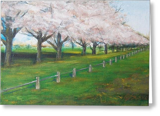 Greeting Card featuring the painting Cherry Blossom Christchurch by Jane  See