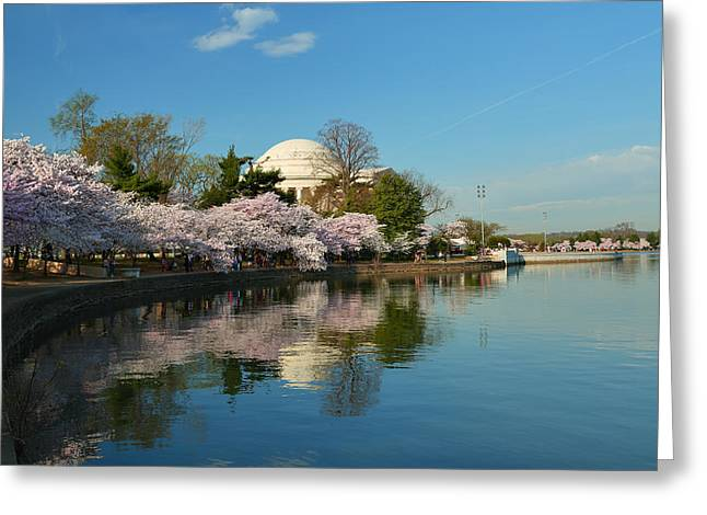 Cherry Blossoms 2013 - 041 Greeting Card by Metro DC Photography