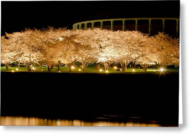 Cherry Blossoms Across The Hocking Greeting Card by Shirley Tinkham