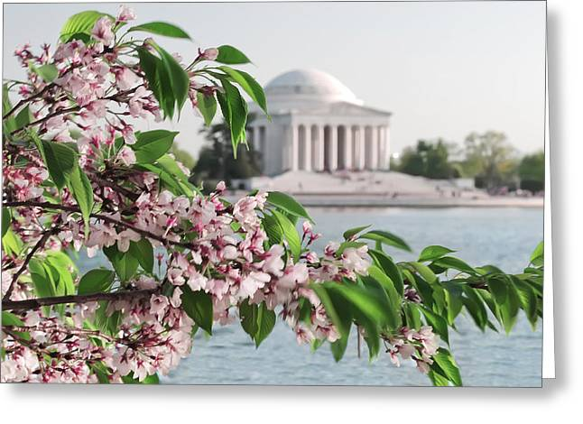 Greeting Card featuring the photograph Cherry Blossoms And The Jefferson Memorial 2 by Mitchell R Grosky