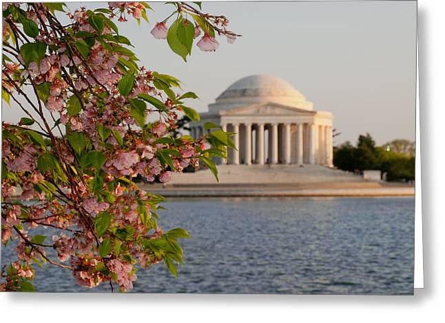 Greeting Card featuring the photograph Cherry Blossoms And The Jefferson Memorial 3 by Mitchell R Grosky