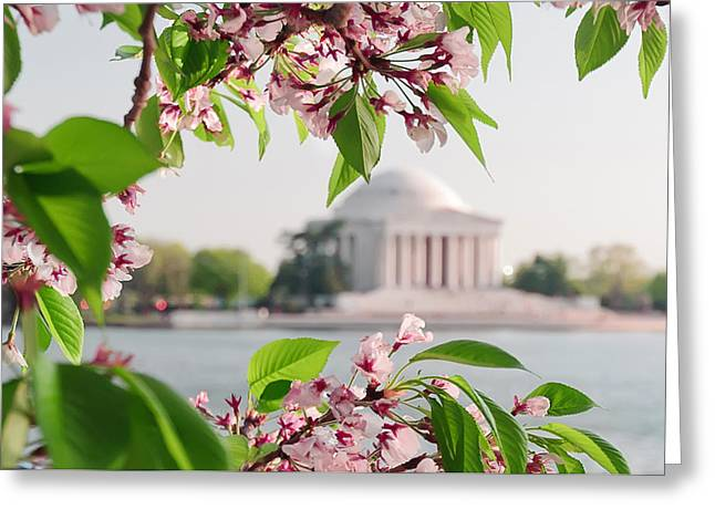 Greeting Card featuring the photograph Cherry Blossoms And The Jefferson Memorial by Mitchell R Grosky