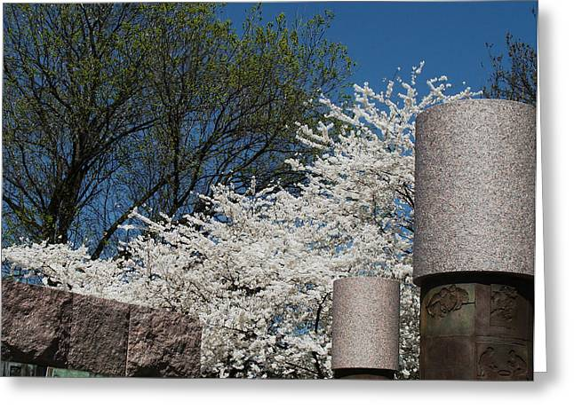Cherry Blossoms At The Franklin D Roosevelt Memorial Greeting Card