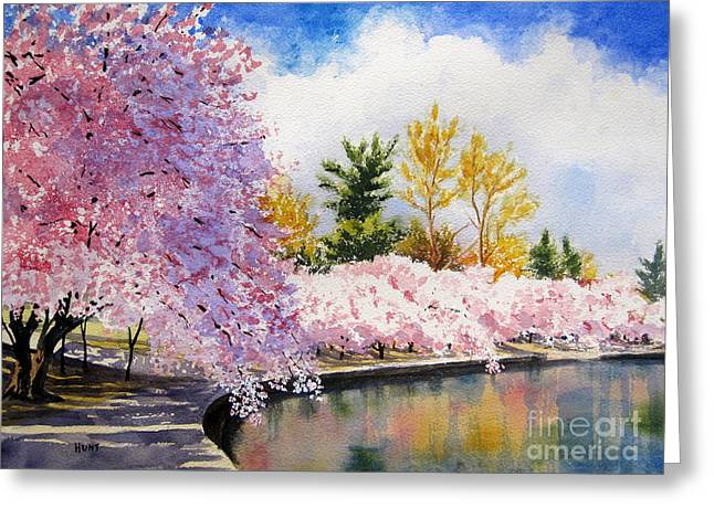 Cherry Blossoms Greeting Card by Shirley Braithwaite Hunt