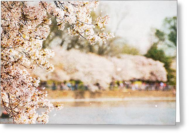 Greeting Card featuring the photograph Cherry Blossoms In Washington Dc by Vizual Studio
