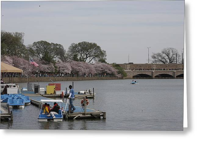 Cherry Blossoms - Washington Dc - 011327 Greeting Card by DC Photographer