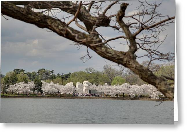 Cherry Blossoms - Washington Dc - 011359 Greeting Card