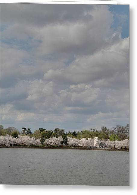 Cherry Blossoms - Washington Dc - 011366 Greeting Card by DC Photographer