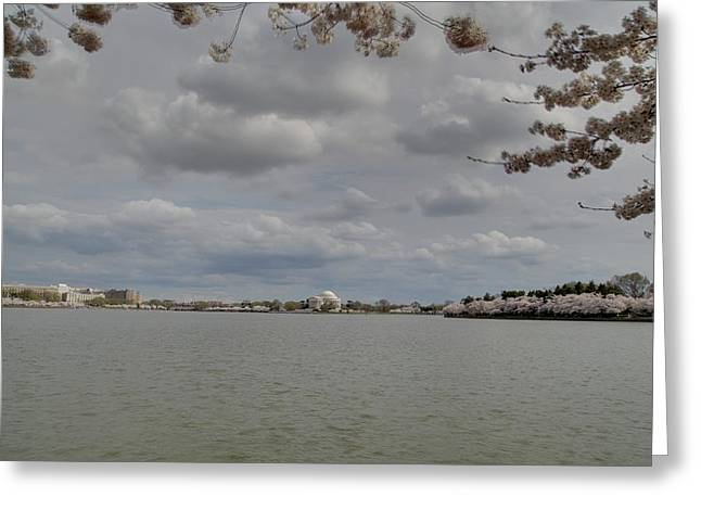 Cherry Blossoms With Jefferson Memorial - Washington Dc - 011319 Greeting Card