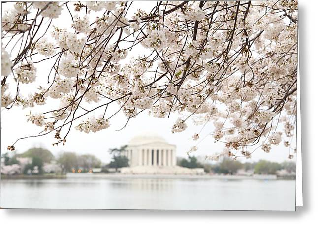 Cherry Blossoms With Jefferson Memorial - Washington Dc - 011348 Greeting Card