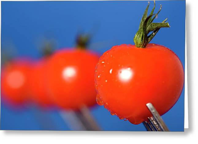 Cherry Tomatoes Greeting Card by John Short