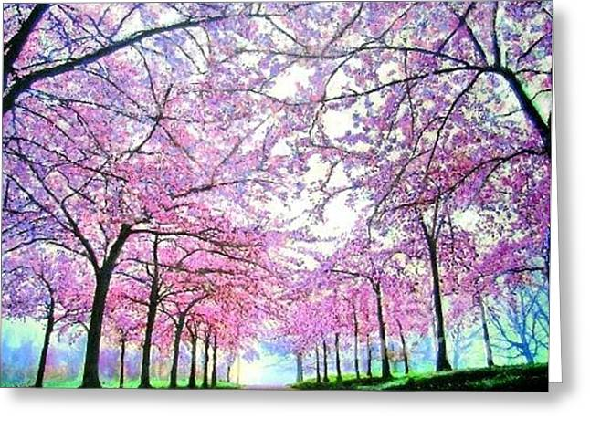 Cherry Trees In Washington Dc Greeting Card