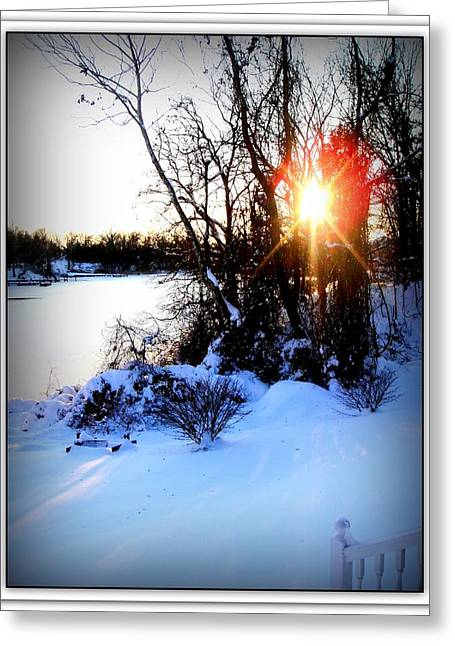 Chesapeake Bay  Winter Wonderland Greeting Card by Danielle  Parent