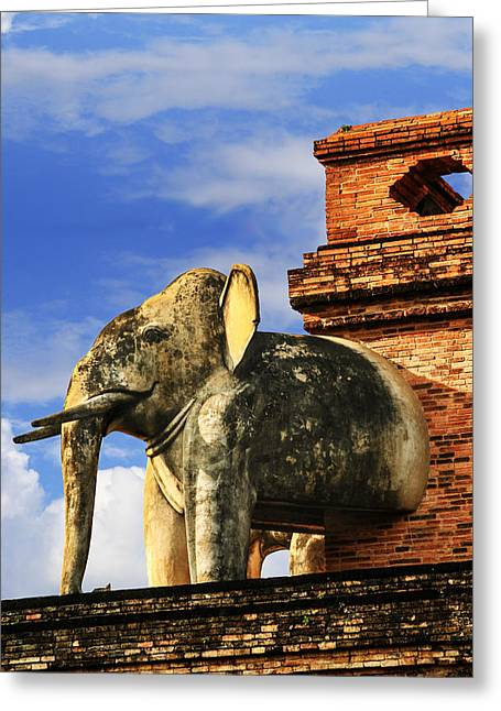 Greeting Card featuring the photograph Chiang Mai Elephant by Rob Tullis