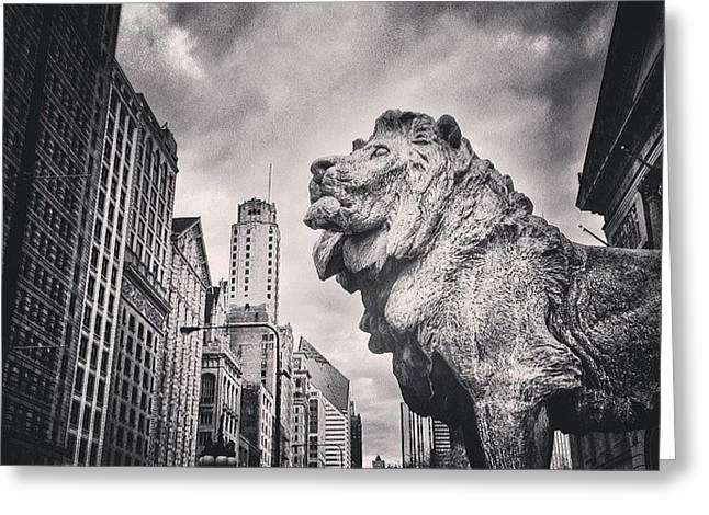 Art Institute Of Chicago Lion Picture Greeting Card by Paul Velgos