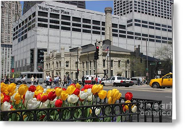 Chicago At Spring Time Greeting Card
