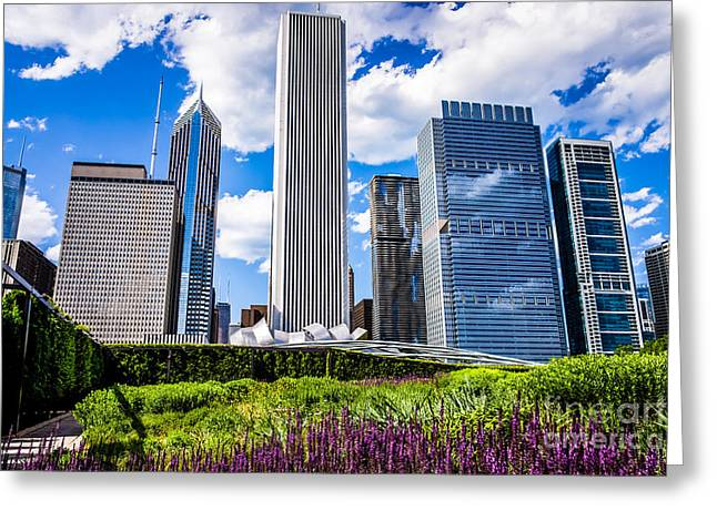Chicago Skyline And Lurie Garden Picture Greeting Card