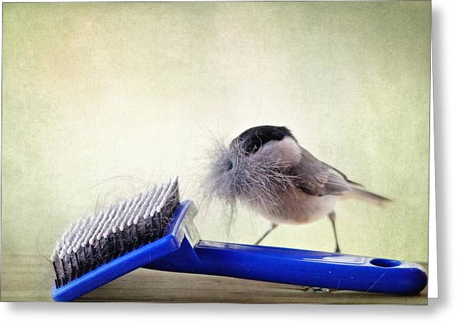 Chickadee At Work Greeting Card by Trina  Ansel
