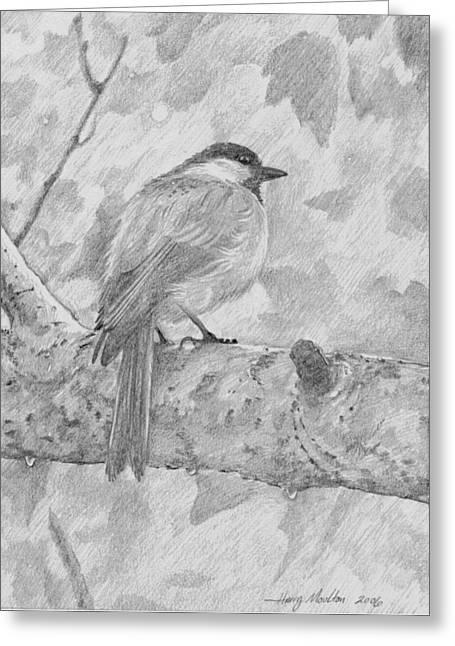 Chickadee In The Rain Greeting Card