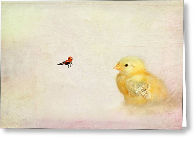Chicken And Beetle Greeting Card by Heike Hultsch