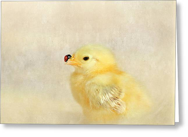Chicken And Ladybug Greeting Card by Heike Hultsch