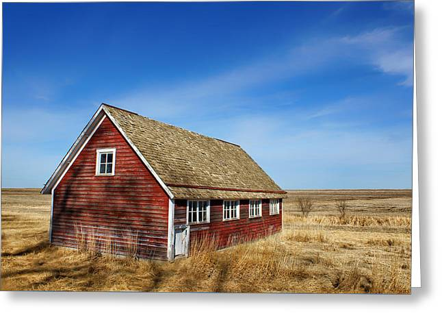 Chicken Coop - 1 Greeting Card