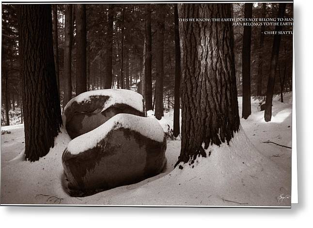 Chief Seattle - Sunlight On A Winter Woods Greeting Card