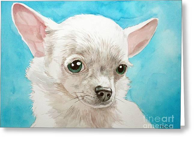 Chihuahua Dog White Greeting Card