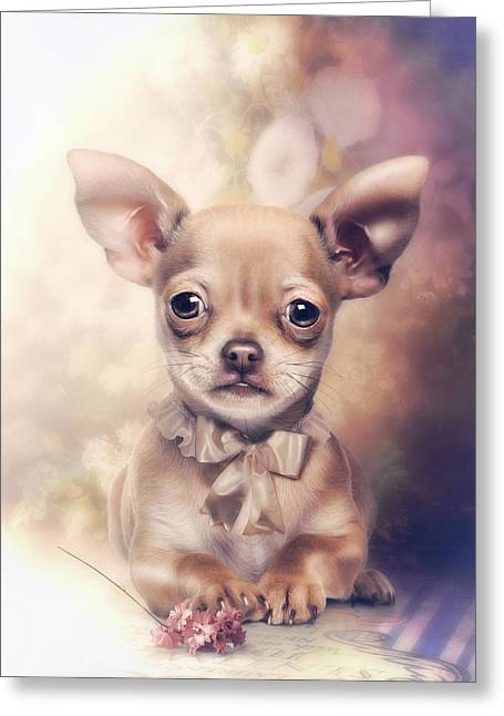 Chihuahua Puppy Greeting Card by Cindy Grundsten
