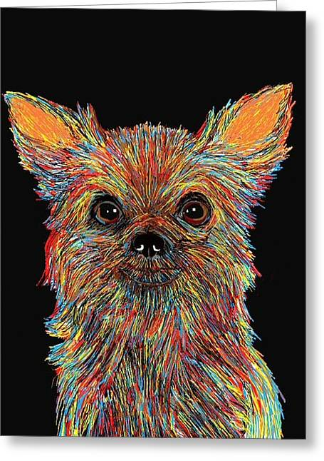 Chihuahua - Rose Greeting Card by Bert Hornbeck