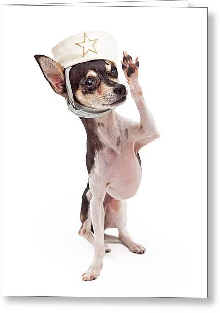 Chihuahua Sailor Dog Saluting Greeting Card by Susan Schmitz