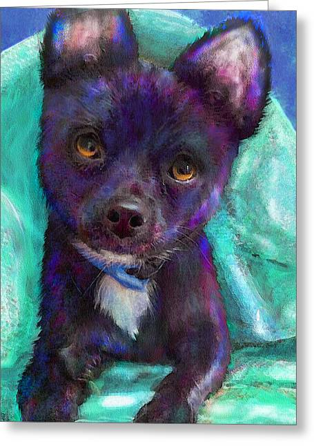Chihuaua Greeting Card by Jane Schnetlage