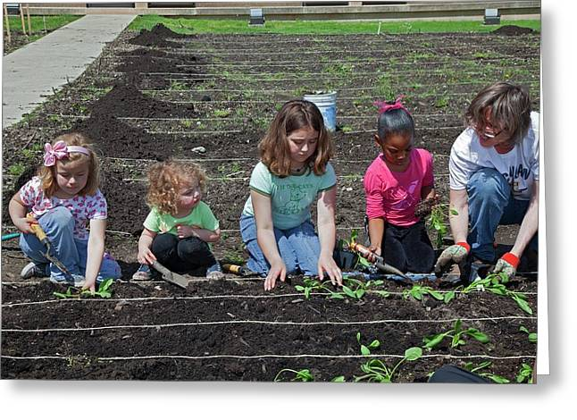 Children At Work In A Community Garden Greeting Card