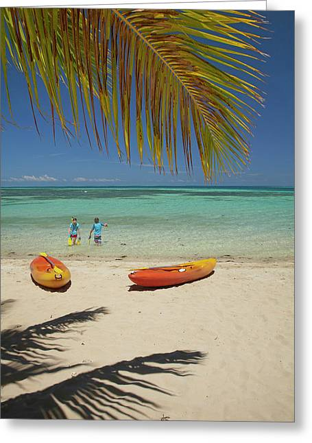 Children, Kayaks And Palm Frond Greeting Card by David Wall