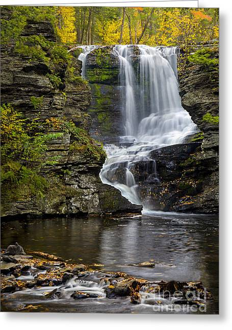 Childs Park Waterfall Greeting Card