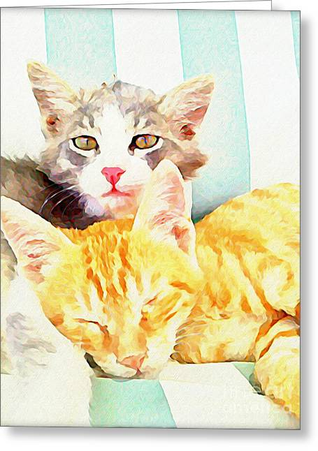 Chill Out Cats Greeting Card by Walker and  Haberfield