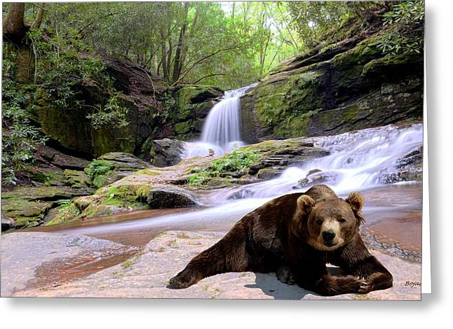 Chillin Bear Greeting Card by Bob Jackson