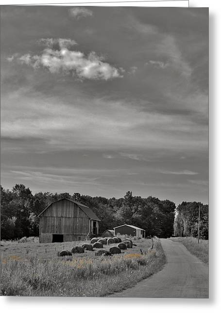 Chillin On A Dirt Road Greeting Card by Anthony Thomas