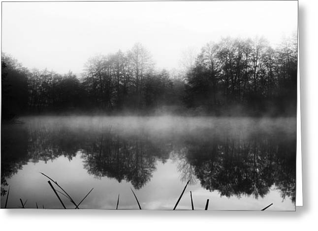 Chilly Morning Reflections Greeting Card by Miguel Winterpacht