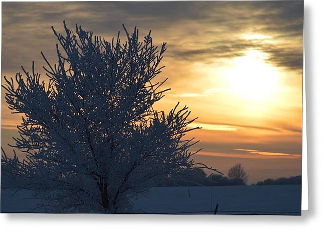 Chilly Sunrise Greeting Card