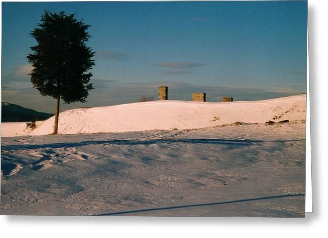 Chimneys And Tree Greeting Card by David Fiske