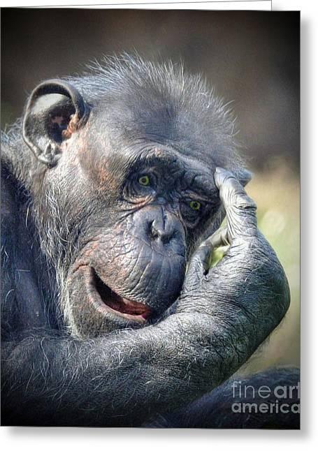 Greeting Card featuring the photograph Chimpanzee Thinking by Savannah Gibbs