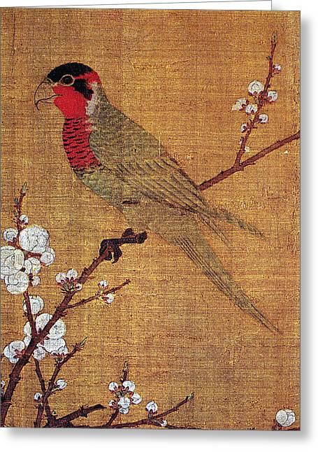 China Parakeet Greeting Card