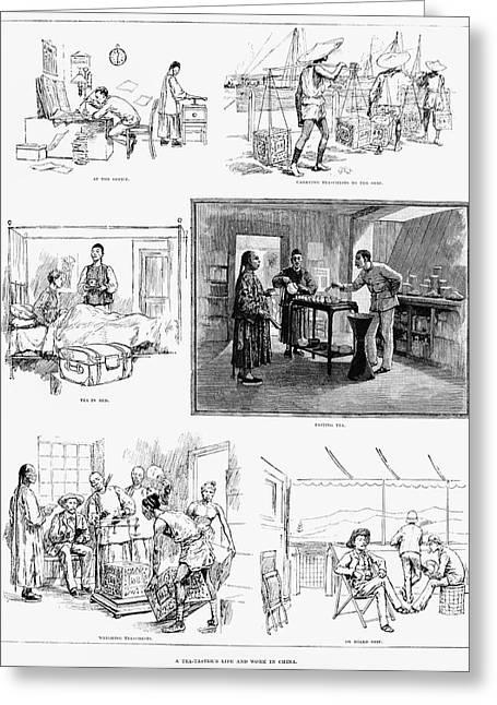 China Tea Taster, 1888 Greeting Card by Granger