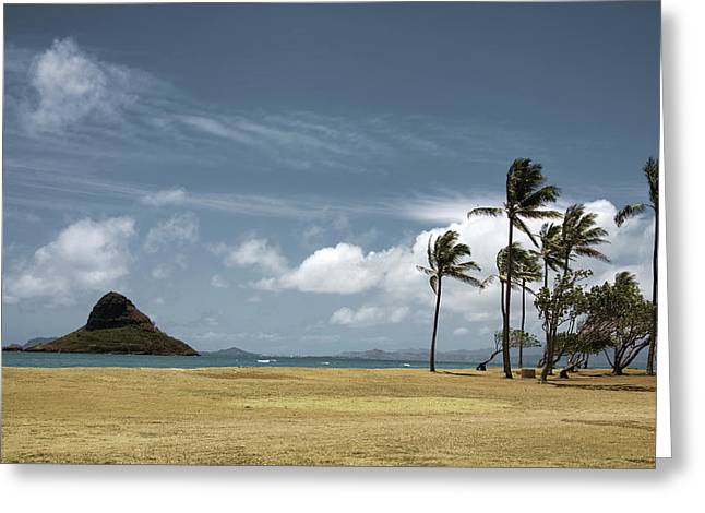 Chinaman's Hat Island Greeting Card by Joanna Madloch