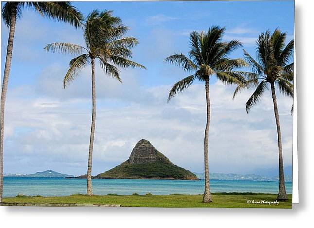 Chinaman's Hat - Oahu Hawai'i Greeting Card